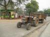 Трактор в зоопарке