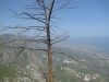 Вид на побережье Северного Кипра